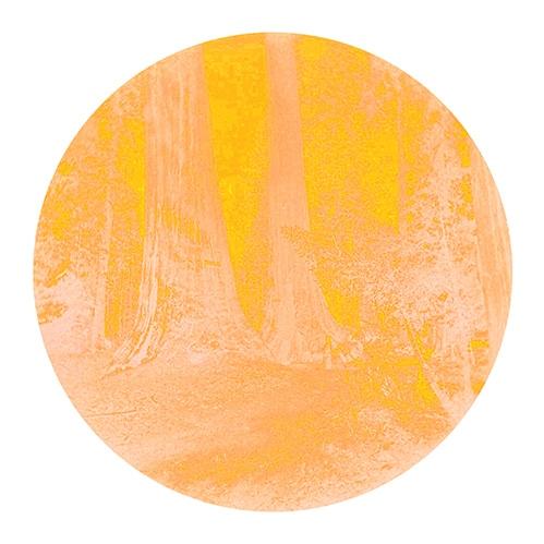 carlton watkins yosemite print