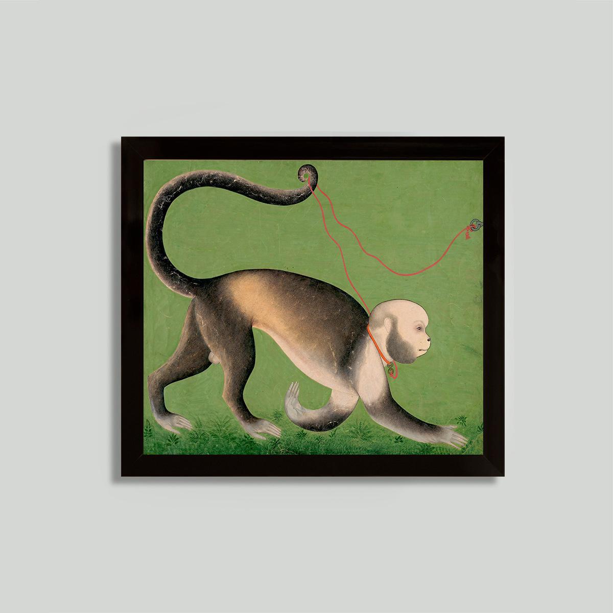 framed monkey print